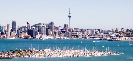 Stage en entreprise en Nouvelle-Zélande