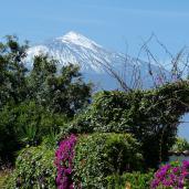 Pars en séjour linguistique à Tenerife